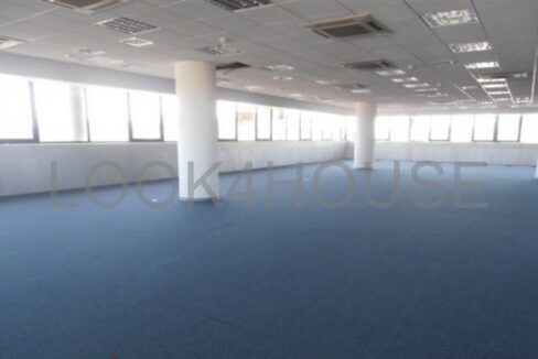 office_in_strovolos_nicosia_cyprus_full_214_wm_resize