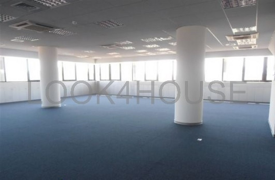 office_in_strovolos_nicosia_cyprus_full_216_wm_resize
