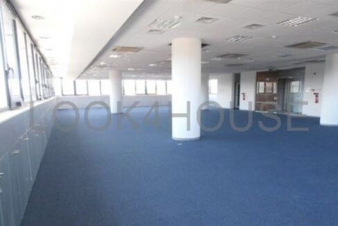 office_in_strovolos_nicosia_cyprus_full_220_wm_resize